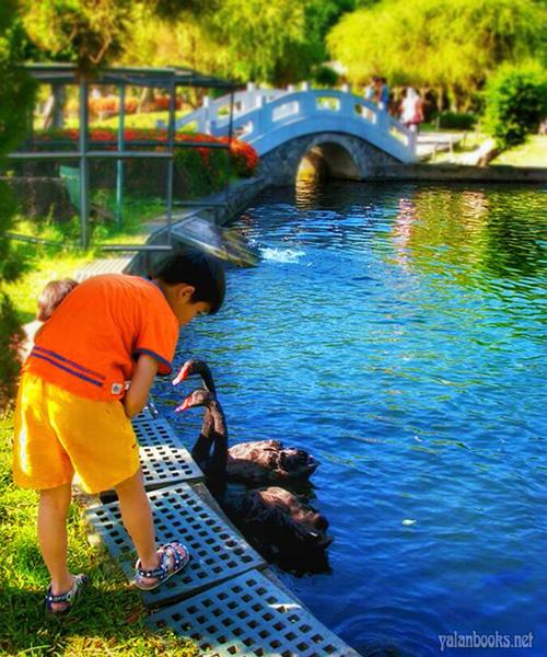 Taipei Life Summer Photography Romanticism 台北生活 夏天 风光摄影 浪漫主义 Yalan雅岚 黑摄会